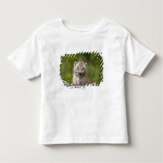 Baby Lynx  Looking Over A Fallen Tree Shirt