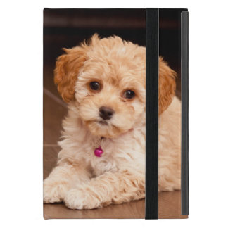 Baby Maltese poodle mix or maltipoo puppy dog Case For iPad Mini