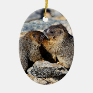 Baby Marmots Ceramic Oval Decoration