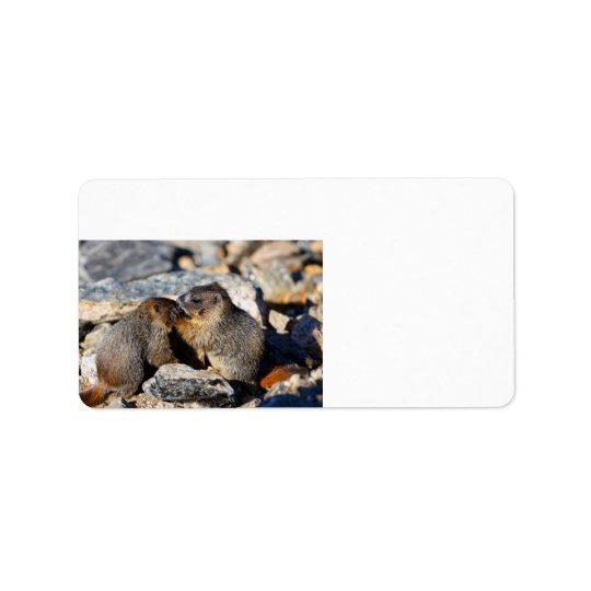 Baby Marmots Label