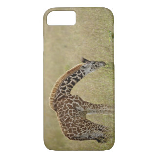 Baby Masai Giraffe, Giraffa camelopardalis iPhone 8/7 Case