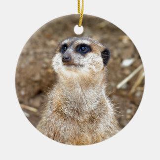 Baby meerkat christmas ornament