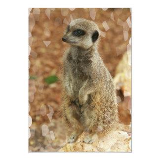 "Baby Meerkat Invitation 5"" X 7"" Invitation Card"