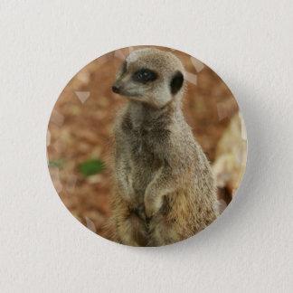 Baby Meerkat Round Button