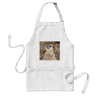 Baby meerkat standard apron