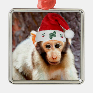 Baby Monkey at Christmas Silver-Colored Square Decoration