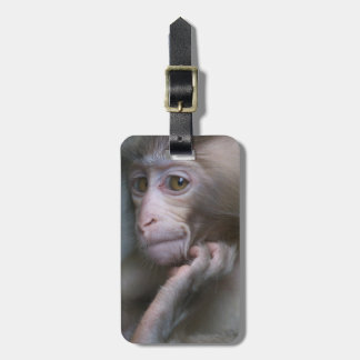 Baby Monkey Luggage Tag