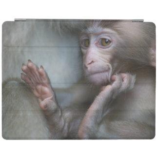 Baby monkey staring. iPad cover