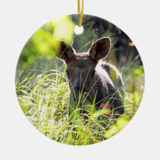 Baby Moose Christmas Ornament