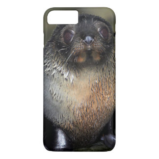 Baby New Zealand Fur Seal iPhone 8 Plus/7 Plus Case