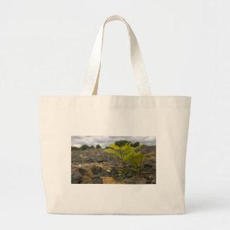 Baby Oak Large Tote Bag