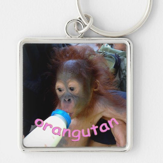 Baby Orangutan Drinks Bottle Silver-Colored Square Key Ring