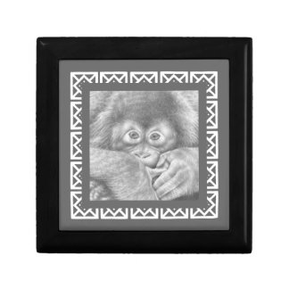 Baby Orangutan Gift Box