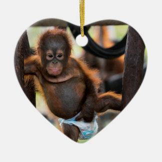 Baby Orangutan Orphan Jeffrey Junior Christmas Ornament
