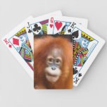 Baby Orangutan Wildlife Primate Card Deck