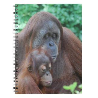 Baby Orangutan with Mother Notebook