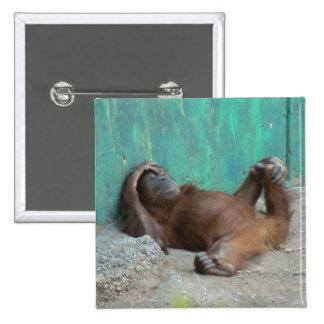 Baby orangutang resting 15 cm square badge