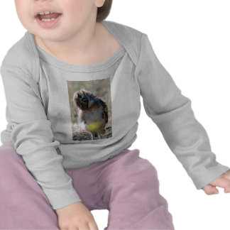 baby owl t shirts