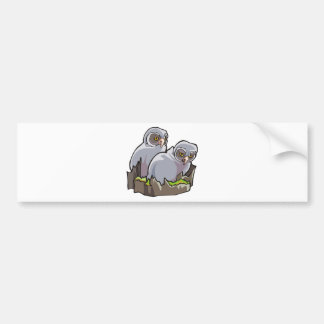 Baby Owls Bumper Sticker