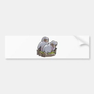 Baby Owls Bumper Sticker