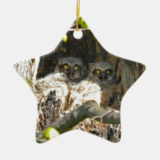 Baby Owls Christmas Ornament
