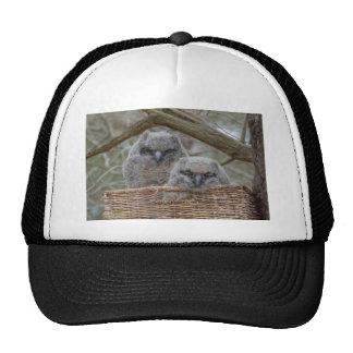 Baby Owls in a Wicker Basket Nest Cap