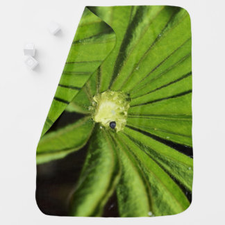 Baby Palm Plant by Shirley Taylor Baby Blanket