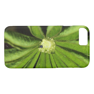 Baby Palm Plant by Shirley Taylor iPhone 8/7 Case