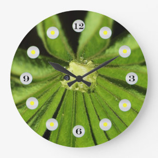 Baby Palm Plant by Shirley Taylor Large Clock