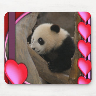 baby-panda-00098-85x85-b mouse pad