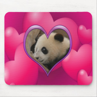 baby-panda-00169 mousepads