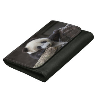Baby panda climb a tree leather wallet for women