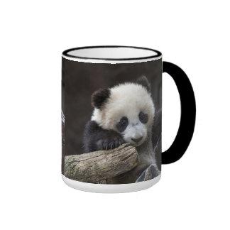 Baby panda climb a tree ringer mug