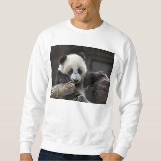 Baby panda climb a tree sweatshirt