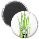 Baby Panda in Bamboo Forest Fridge Magnet