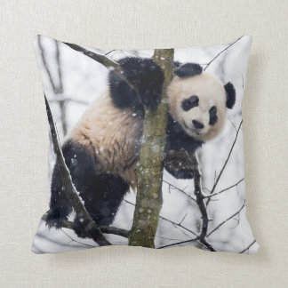 Baby Panda in Tree Cushion