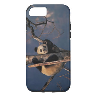 Baby panda playing on tree, Wolong, Sichuan iPhone 8/7 Case