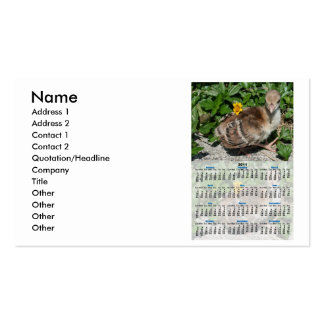 Baby Peacock 2011 Whole Year Calendar Pack Of Standard Business Cards