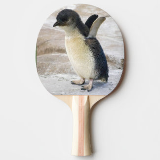 Baby Penguin - Ping Pong Paddle Red Rubber Back