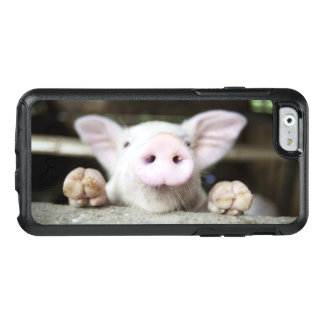 Baby Pig in Pen, Piglet OtterBox iPhone 6/6s Case
