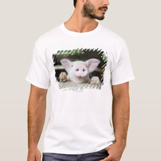 Baby Pig in Pen, Piglet T-Shirt