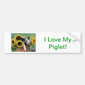Baby Piglet Pig Bumper Stickers