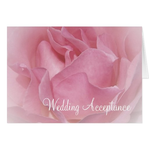 Baby Pink Rose Wedding Acceptance Card