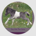 Baby Pinto Mini Horse Stickers