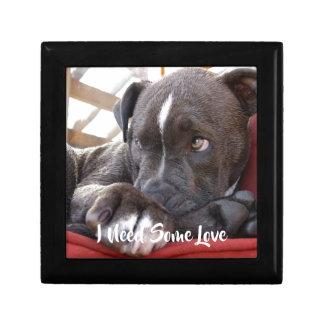 Baby Pitbull Puppy Gift Box