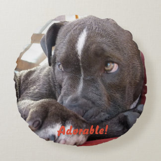 Baby Pitbull Puppy Round Cushion