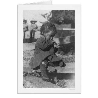 Baby Playing in Nome 1906 Greeting Cards