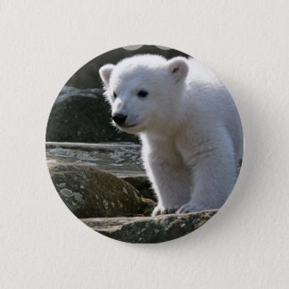 Baby Polar Bear Button