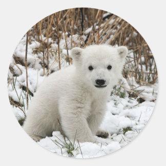 Baby Polar Bear Classic Round Sticker