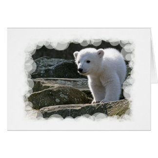 Baby Polar Bear Greeting Card